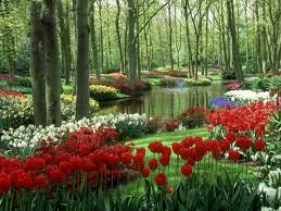 Small Picture 639 best Gorgeous Gardens images on Pinterest Nature