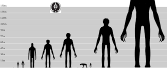 My Art And Ideas Decided To Make A Quick Height Comparison
