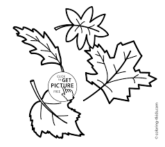 Small Picture Autumn coloring pages leaves for kids seasons coloring pages