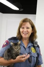 Animal Cops Houston : Programs : Animal Planet : Discovery Press Web
