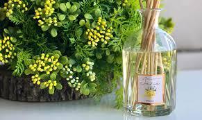 Купить ароматы для дома от <b>Ambientair</b> (Испания)