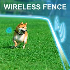 Wireless Fence | Shock Collar