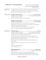Resume Samples For Chemistry Teachers Resume Ixiplay Free Resume