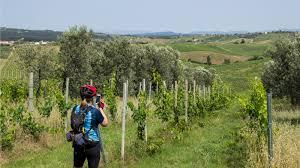 the magic of tuscany bike tours and