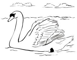 Small Picture Swan Coloring Page Samantha Bell