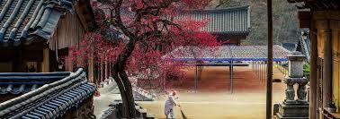 VisitKorea - Imagine Your <b>Korea</b>
