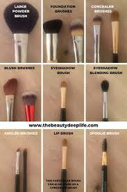 exles of makeup brushes for beginners