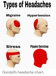 Different Types Of Headaches Chart Types Of Headaches Migraine Hypertension Stress Pippin