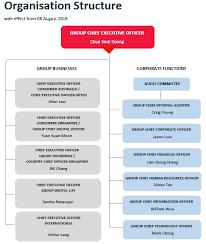 Singapore Power Organisation Chart Organisation Chart Singtel