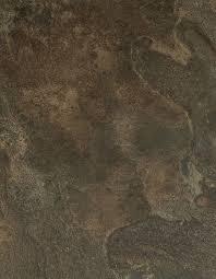 limestone bark