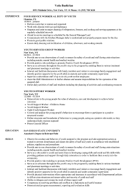 Cv Template Youth Worker Resume Format