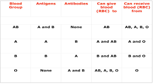 17 Blood Type Donation Flow Chart Blood Type Donation Flow