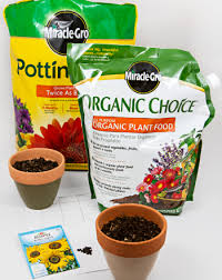 do plants grow best in chemical fertilizer organic fertilizer or  middle school science science projects do plants grow best in chemical fertilizer organic fertilizer