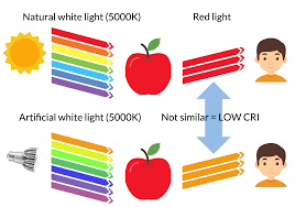 What Is Cri The Ultimate Guide To The Color Rendering Index