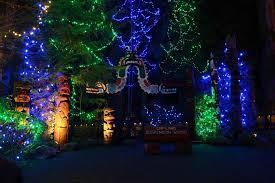 tree lighting ideas. Full Size Of Funcoukrhfuncouk Garden Suspended Landscape Tree Lights Lighting Ideas Inspiration Free Images Water Horizon