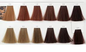 Inoa Hair Color Shade 7n Beauty Within Clinic
