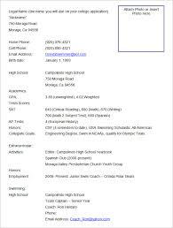 Various Resume Formats Ready Resume Format Under Fontanacountryinn Com