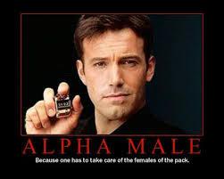 Amanda on the Edge: The Definition of an Alpha Male via Relatably.com