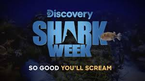 Shark Week 2019 Commercial Rob Riggle Gastronomia Y Viajes