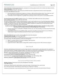 Resume Professional Resume Service High Resolution Resume Services