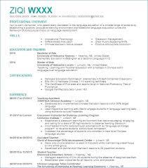 Objective On Resume For Sales Associate Artemushka Com