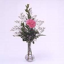 phi mu 1 carnation budvase 1 pink or