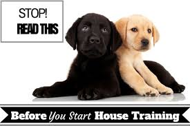 Puppy Bathroom Chart Basic Guide On House Training Puppies Indoor And Outdoor
