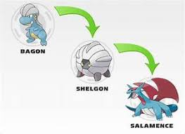 Shelgon Evolution Chart 45 Prototypical Pokemon Salamence Evolution Chart