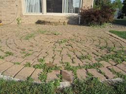 ground level brick pavers patio step