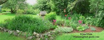 Small Picture Hummingbird Garden Plans Creating a Hummingbird Garden