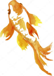 goldfish chinese painting watercolours vector by hagra