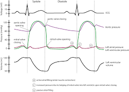 Ecg Rate Determination Chart Clinical Electrocardiography And Ecg Interpretation Ecg