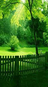 Wallpaper Nature Green Android - 2021 ...