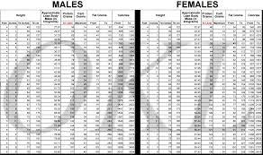 Keto Chart Printable Okl Chart Keeping Track Of Keto Diet And Macros Keto Concern