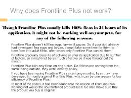 Frontline Plus Dosage For Dogs Weight Pivotlife Co