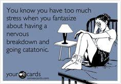 Nervous Breakdown on Pinterest | Taxes Humor, Mental Health ... via Relatably.com