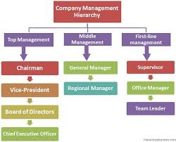 Executive Hierarchy Chart Company Management Hierarchy Company Structure
