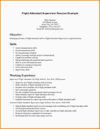 Flight Attendant Resume Sample Flight attendant Resume Examples Awesome Flight attendant Resume No 4