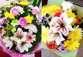 share the flower farm