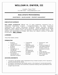 Beautiful Real Estate Sales Agent Resume Sample Pictures
