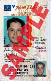 Image result for under 18 drivers license