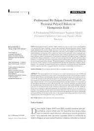 Perinatal Hospice Birth Plan Continuity And Change In Mothers Narratives Of Perinatal Hospice