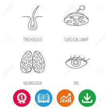 Eye Neurology Brain And Surgical Lamp Icons Trichology Linear