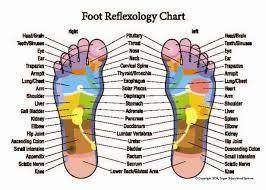Reflexology Hand And Foot Chart New 8 X 11