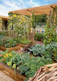 vegetable garden raised to the rank of
