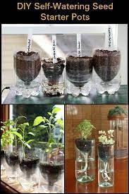 diy self watering seed starter pots