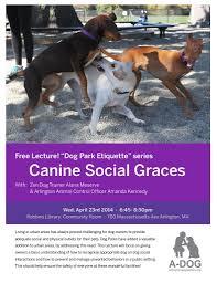 Lost Pet Flyer Maker Sue Arlington Dog Owners Group 63