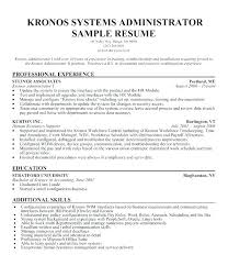Active Directory Resume System Administrator Server Administrator