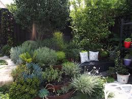 Small Picture Inner West Sydney garden Design Brendan Moar Garden Travel Hub