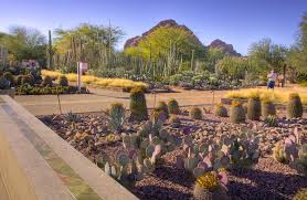 Small Picture Strategies For A Smart Landscape Design Landscaping Ideas And idolza